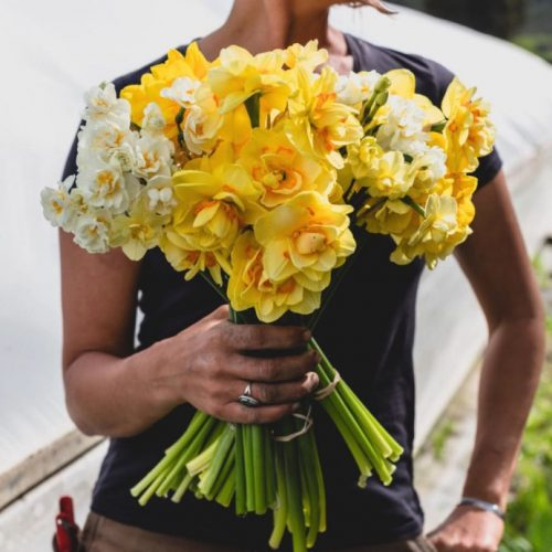 Example of flower subscription bouquet